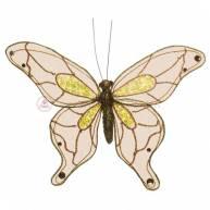 Бабочки большие полупрозрачные