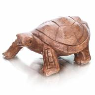 Черепаха (дерево)